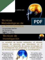 Técnicas  Metodológicas de la Psicolingüística