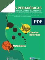 Diagnosticas Naturales Matematica 2011