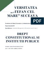 PROIECT - Drept Constitutional Si Institutii Politice - Gabriela Nemtoi