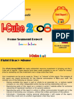 Home Segment Report I-Cube 2008 (Version 1)