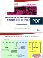 Apresentacao Seminario Intenacional Cancer Mulher Saude Publica Claudio Noronha