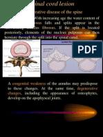 Spinal cord lesion 2 د.رشاد عبدالغني