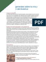 Aspectos generales sobre la cría y explotación del Avestruz