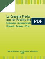 01 MAY 09 - La Consulta Previa Con Los Pueblos Indigenas