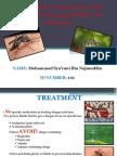 Dengue Assignment