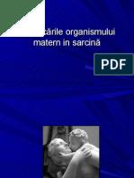 Curs Adaptarea Materna in Sarcina