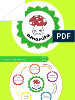 Presentación Final - Amanita - Caskitus