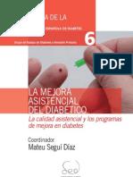 Tomo 6 - La Mejora Asistencial Del Diabético