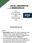 Hidrosefalus Anensefalus Dan Mikrosefalus New