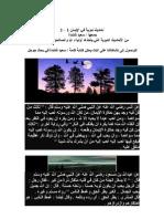 سعيد شلندة - أحاديث نبوية في الإيمان
