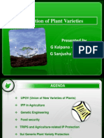 Group- 11 Plant Varieties Protection