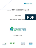 BDC Inception Report - PDF