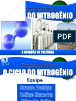 Ciclo Do Nitrogenio