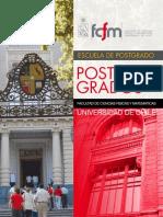 postgrados2010