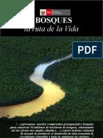 Bosques Ruta de la Vida - PERÚ