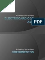 electroca..