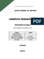 CARPETA PEDAGOGICA 2011 CAMANA
