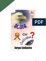 (eBook - lico Jorge Linhares - Livro - Quem É Você - Águia Ou Galinha (Corrigido 11-09-2006)