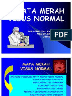 Kuliah II. S-I Mata Merah Visus Normal-BK