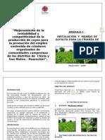 MODULO II_INSTALACIÓN DE PASTOS