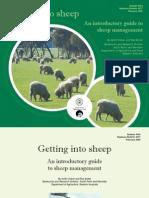 Bn Getting Into Sheep Feb09