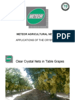 Meteor Crystal Net Presentation