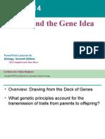 Chapter 14 Mendel & the Gene Idea (2005)