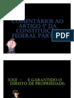 Constituição-Artigo-5º-comentada-parte-3