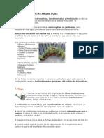 Jardineria Cultivo de Plantas Aromatic As