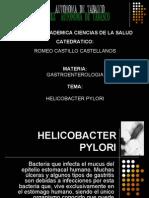 Helicobacter Pylori (DIMS)