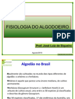 Fisiologia Do Algodoeiro