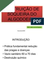 DESTRUIÇÃO DE SOQUEIRA DO ALGODOEIRO