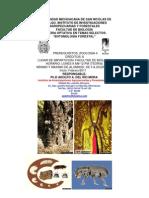 Curso Entomologia Optativa Semestre Febrero 2011