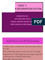 Audit Process in CIS Environment