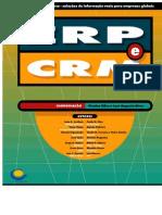 erp_e_crm_excerto