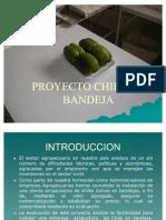 Proyecto Chile en Bandeja