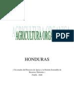 hortalizas_organicas