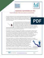 Perspectivas Empresarias  y oportunidades para 2011