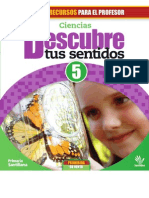 casentidos5