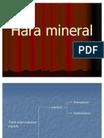 4 Fistum 2 Hara Mineral