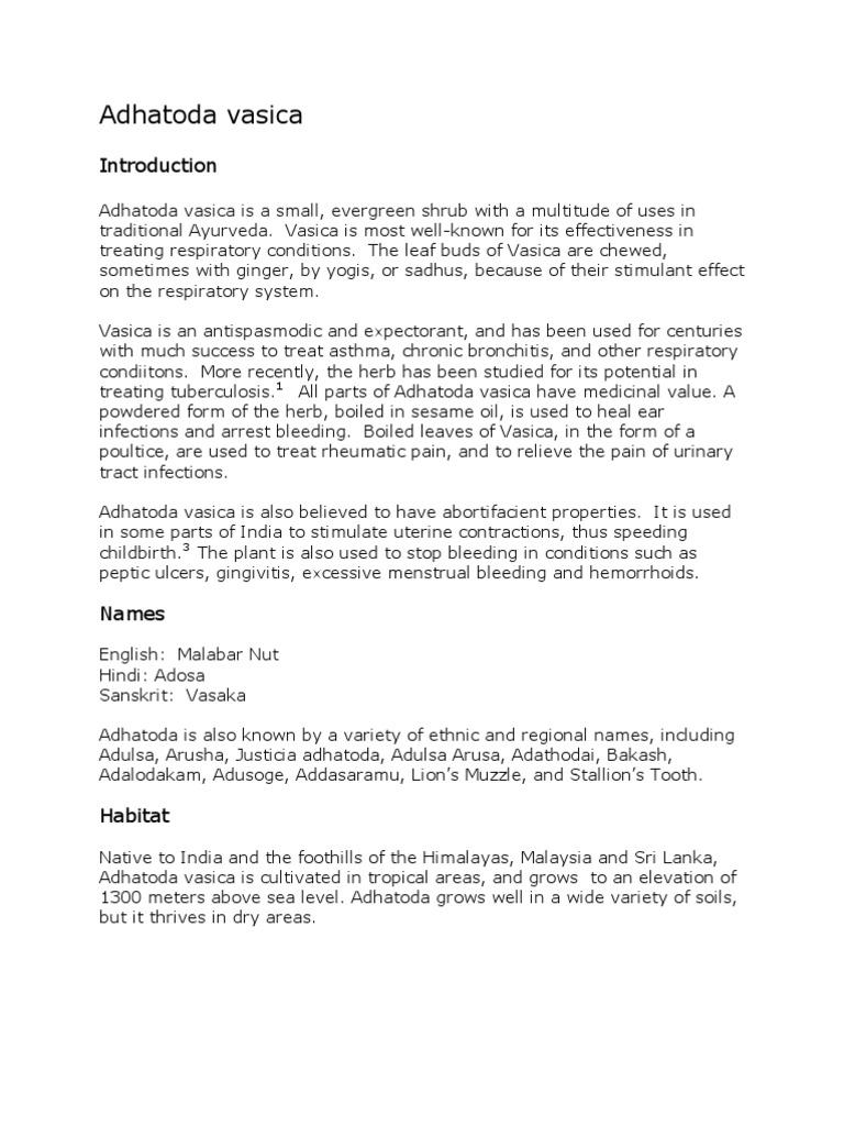 Antibacterial Activity Of Adhatoda Vasica Pdf