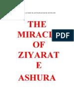 Miracles of Ziyaarat e Aashooraa