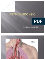 Astmul Bronsic Pre Zen Tare de Caz ..