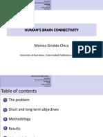 Human Brain Connectivity Summary