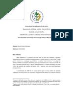 Instrumentos Processuais - Daniel Corban Rodrigues