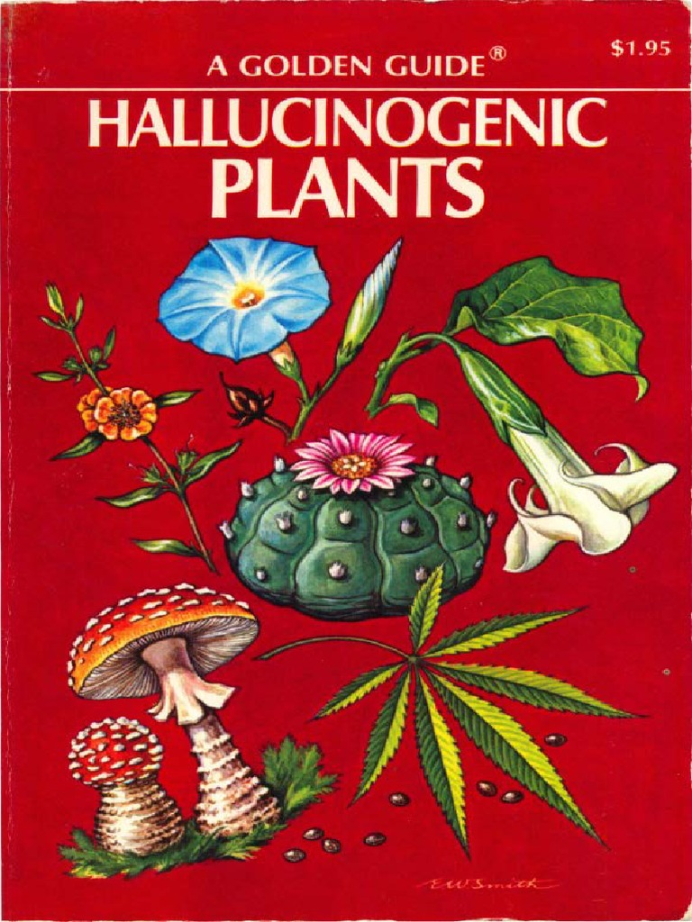 Plants Of The Gods  Their Sacred, Healing, And Hallucinogenic Powers (2e)   Re Schultes, A Hofmann & C R�tsch [2001] {0892819790}  Psilocybin