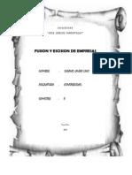 Fusion y Escision de Empresas