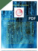 Acupuncture Development in Indonesia (New Version)