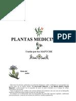 Aukanaw - La Ciencia Mapuche 5. Plantas Medic in Ales