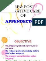 27865169 Pre Post Operative Care of Appendicectomy